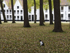 begijnhof beguinage