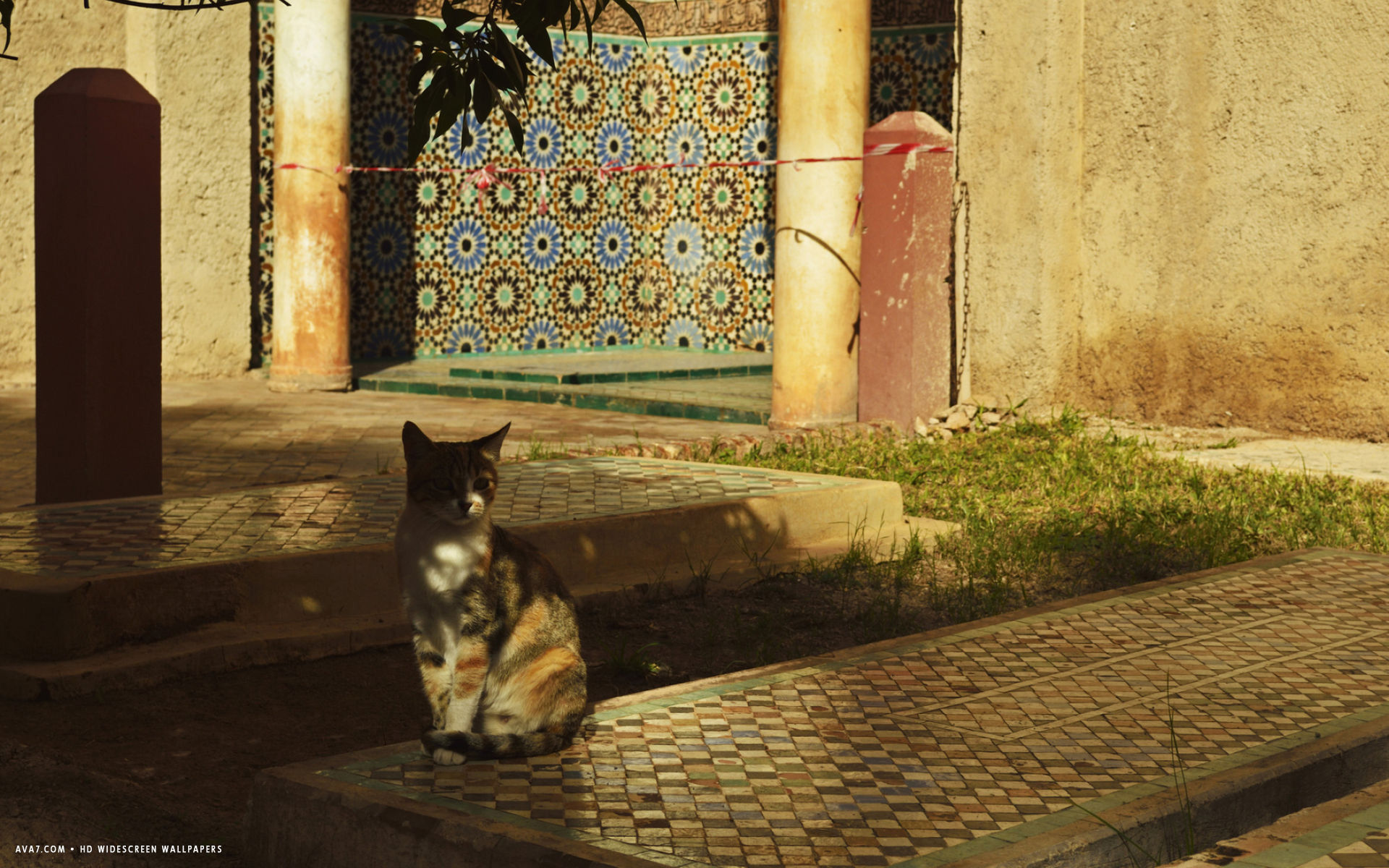 can and saadian tombs medina marrakesh morocco north africa